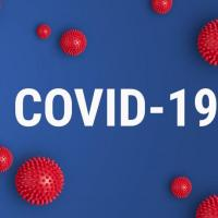 Infographie covid-19